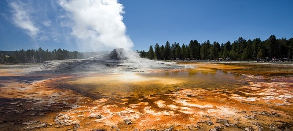 castle-geyer-yellowstone.jpg