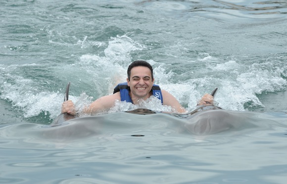 dolphins-swim-mexico