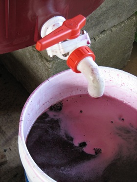 home-wine-making